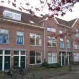 PaRadijsstraat (42 exemplaren)