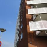 Woningen met winkelruimte, Oosterhamriklaan