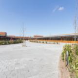 Reitdiepschool Rietwierde