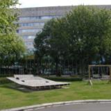 Sun College