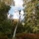 Balancerende figuur - Jan  Steen
