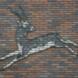 Indische antilope - Wladimir de Vries